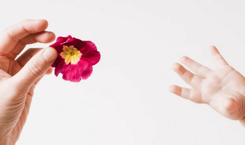 Baby greift nach Blume